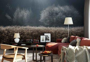 Ταπετσαρία τοιχογραφία Winter Field