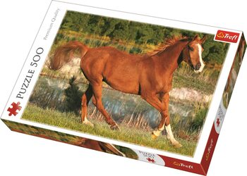 Πъзели The Beauty of Gallop
