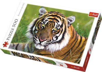 Πъзели Tiger