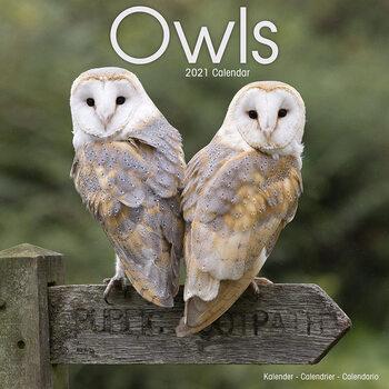 Owls Календари 2021