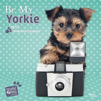 Be My Yorkie Календари 2017
