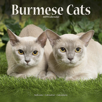 Burmese Календари 2021