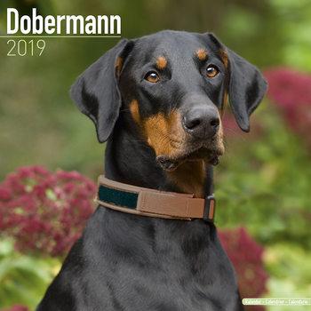 Dobermann (Euro) Календари 2021