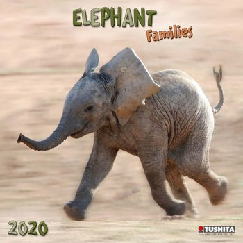 Elephant Families Календари 2020