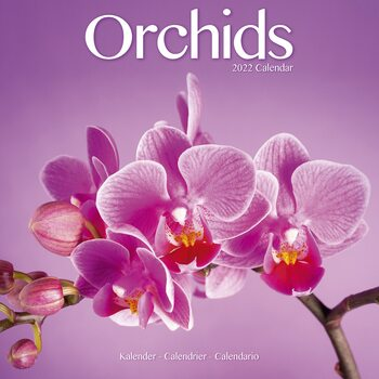 Orchids Календари 2022