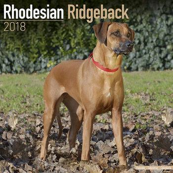 Rhodesian Ridgeback Календари 2018