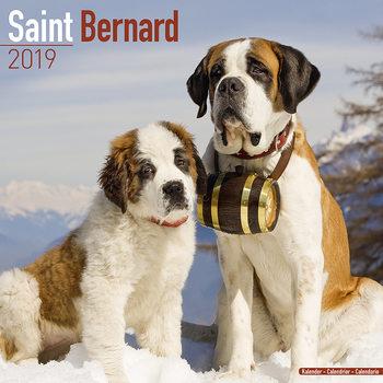 St Bernard Календари 2021