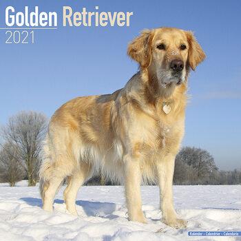 Календар 2021 Golden Retriever