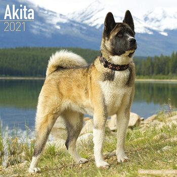 Календар 2021 Akita