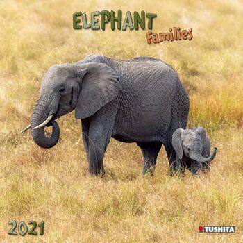 Календар 2021 Elephant Families