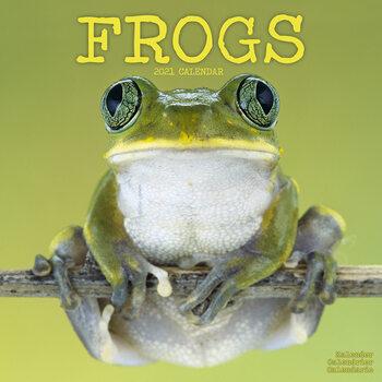 Календар 2021 Frogs