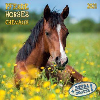 Календар 2021 Horses