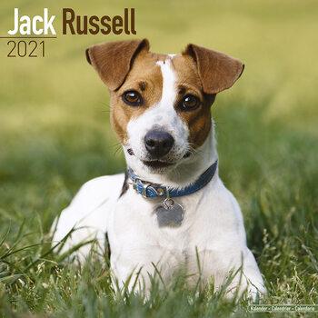 Календар 2021 Jack Russell