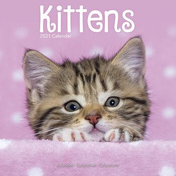 Календар 2021 Kittens