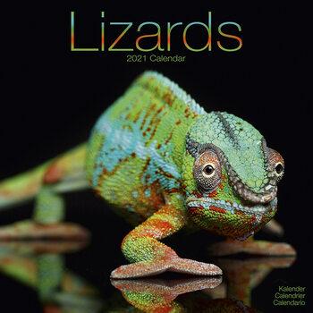 Календар 2021 Lizards