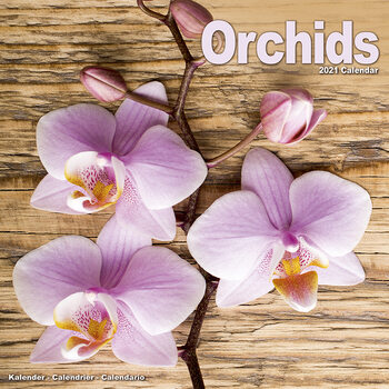 Календар 2021 Orchids