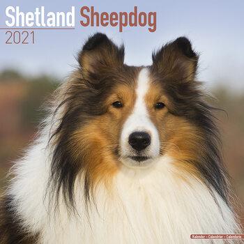 Календар 2021 Shetland Sheepdog