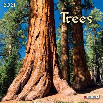 Календар 2021 Trees