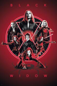 Плакат Black Widow - Legacy