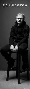 Плакат Ed Sheeran - Black and White