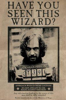 Плакат Harry Potter - Wanted Sirius Black