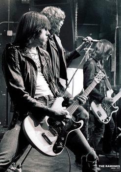 Плакат The Ramones - C.B.G.B.'S NYC 1977