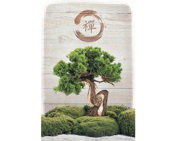 Bonsai Zen Плакат