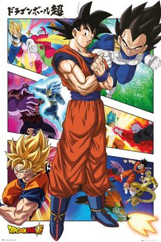 Dragon Ball - Panels Плакат