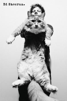 Ed Sheeran - cat Плакат