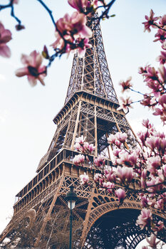 Paris - Eiffel Tower Плакат