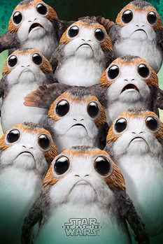 Star Wars The Last Jedi - Many Porgs Плакат