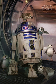 Star Wars The Last Jedi - R2-D2 & Porgs Плакат