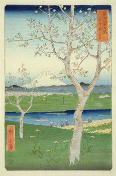 Платно Fuji from Koshigaya, Mushashi, No.14 from the series '36 Views of Mt. Fuji', ('Fuji Saryu Rokkei'),
