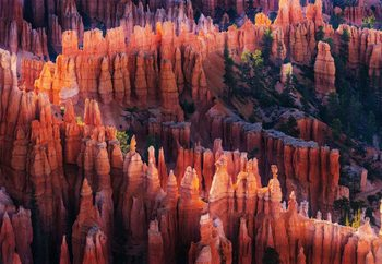 Bryce Canyon At Sunset Фотошпалери