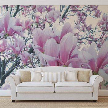 Flowers Magnolia фототапет