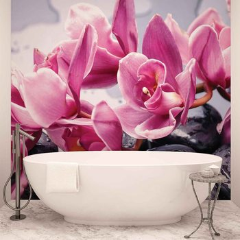 Flowers Orchids Stones Zen Фото-тапети