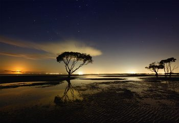 Moonrise фототапет