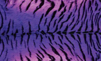 Tiger Animal фототапет