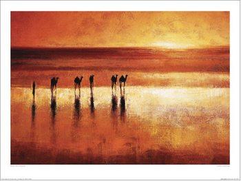 Jonathan Sanders - Camel Crossing Художествено Изкуство