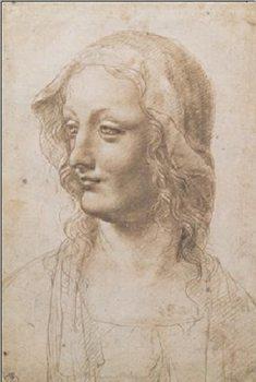 Portrait of a Woman - Busto Di Donna Художествено Изкуство