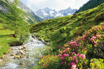 Alps - Nature and Mountains плакат