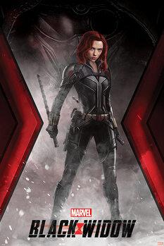 Black Widow - Widowmaker Battle Stance плакат