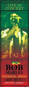Bob Marley - concert - плакат
