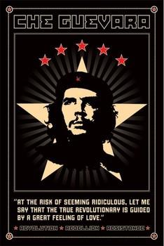 Che Guevara - odolnost плакат