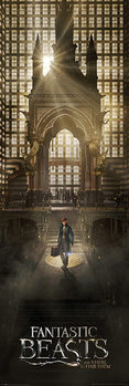 Fantastic Beasts And Where To Find Them - Teaser плакат