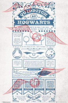 Harry Potter - Quidditch At Hogwarts - плакат