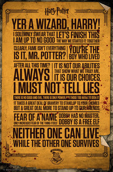 Harry Potter - Quotes - плакат
