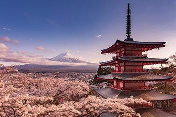 Mount Fuji Blossom плакат