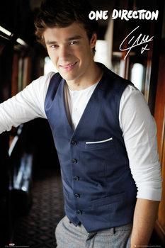 One Direction - liam portrait - плакат