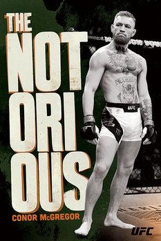 UFC: Conor McGregor - Stance плакат